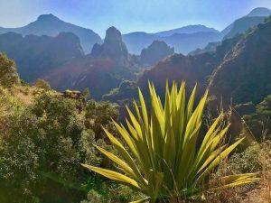 Trail-Péi-Spécificités-Trail-Réunion