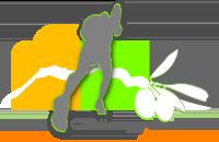 Logo-Challenge-Trail-de-Provence