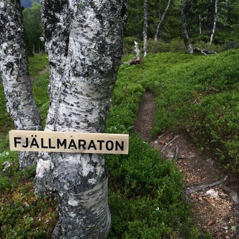 Logo-Fjällmaraton
